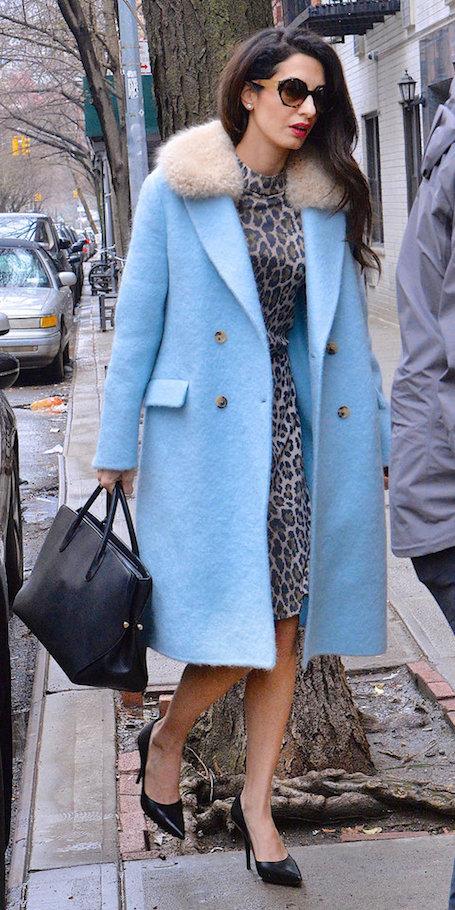 Голубое пальто и леопардовое платье - Амаль Клуни с помпой встречает весну! Фото