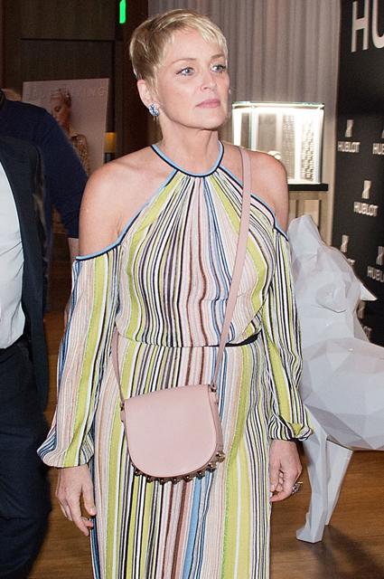 59-летняя Шэрон Стоун в платье с открытыми плечами затмила всех гостей раута! Фото
