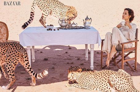 Хищная красота: Анджелина Джоли в дерзком платье томно позирует с гепардами! Фото