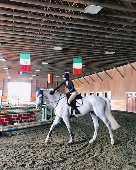 Отчаянная наездница: Белла Хадид верхом на арабском скакуне! Фото