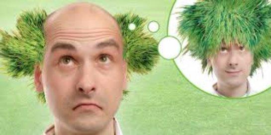 Пересадка волос в Киеве: стопроцентный эффект и быстрое заживление после процедуры