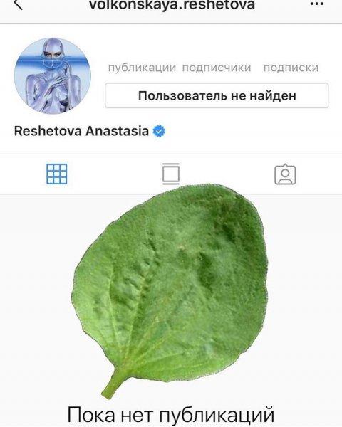 Анастасия Решетова удалила свой Instagram из-за измены Тимати