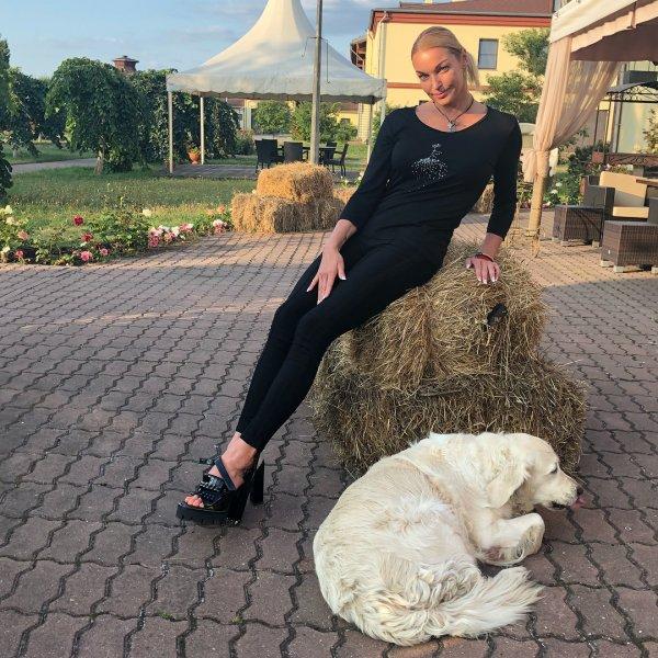 «Долго скачет»: Поклонники не верят в существование коня, подаренного Волочковой
