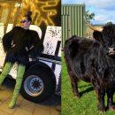 Черная шерсть и зеленые «копыта»: Топурия рассмешила новым сценическим образом «коровы»