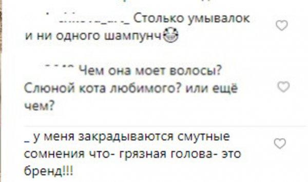 Слюна кота вместо шампуня? Фанаты Волочковой нашли причину вечно грязных волос