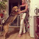Грязная работёнка – Собаки лижут Волочковой мозоли за еду