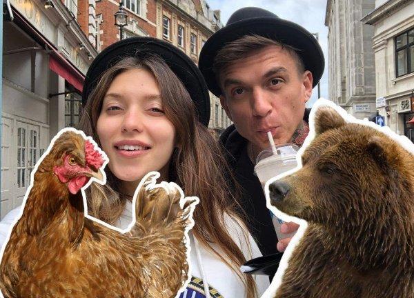 Медведь и курица? Тодоренко и Топалов публично унижают друг друга в Instagram