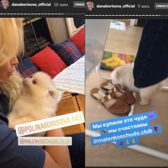 Полина, в будку? «Собачья» мать Борисова мстит «нелюбимой» дочери