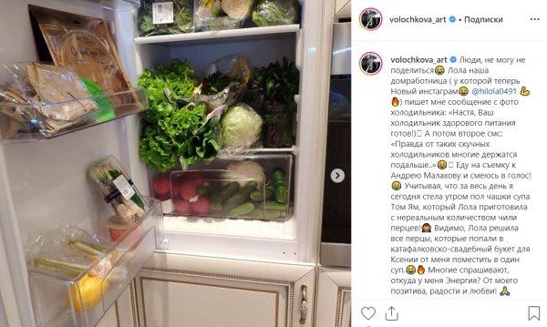 Только кот и балетный станок: Домработница Волочковой предрекла ей статус вечной брошенки