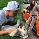 Месть за интрижку с Бузовой? Беременная Костенко ударила ногой собаку Тарасова