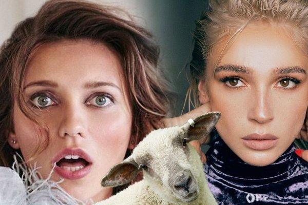 «Это моя овца Регина!» - Ивлеева публично оскорбила Тодоренко в шоу «Орел и Решка»