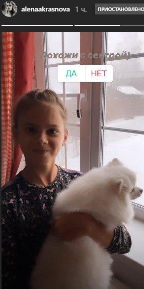На шее у Пугачевой! Жена Никиты Преснякова поселила родню в семейном «гнёздышке» мужа