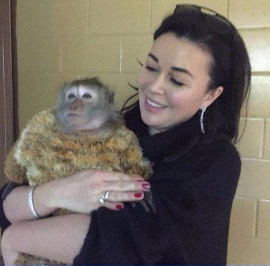 Анастасия Заворотнюк умилила снимком с обезьянкой