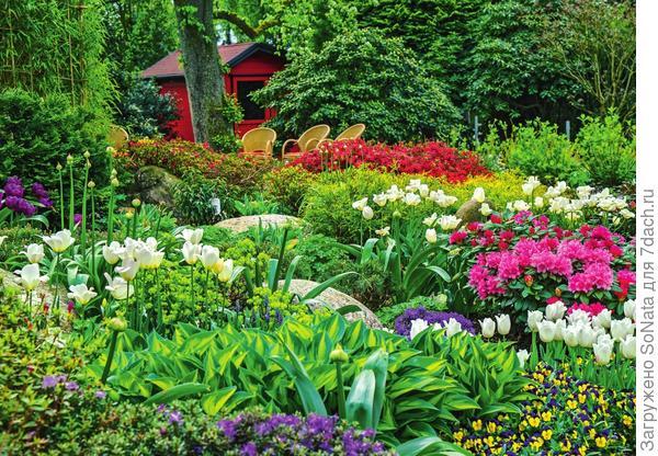 Прекрасный сад за пару кликов