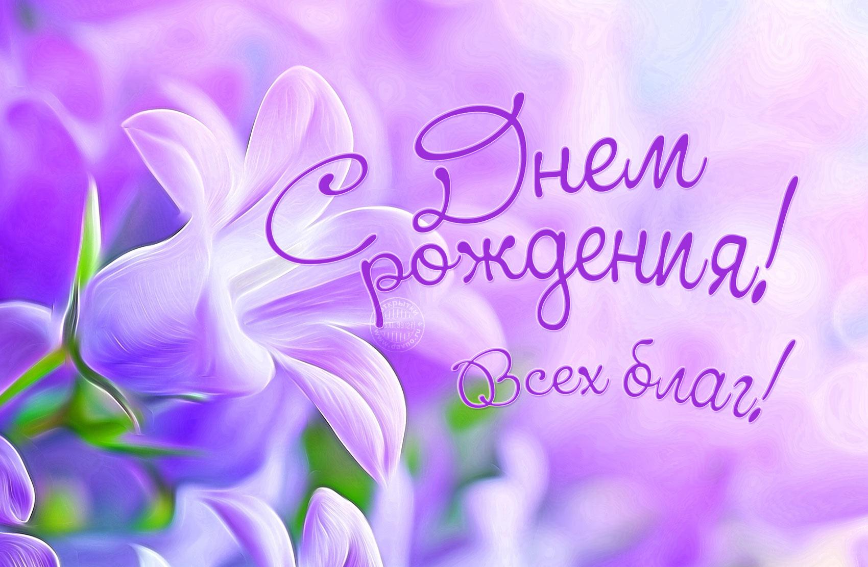 http://zheltaya.ru/wp-content/uploads/birthday-8251.jpg